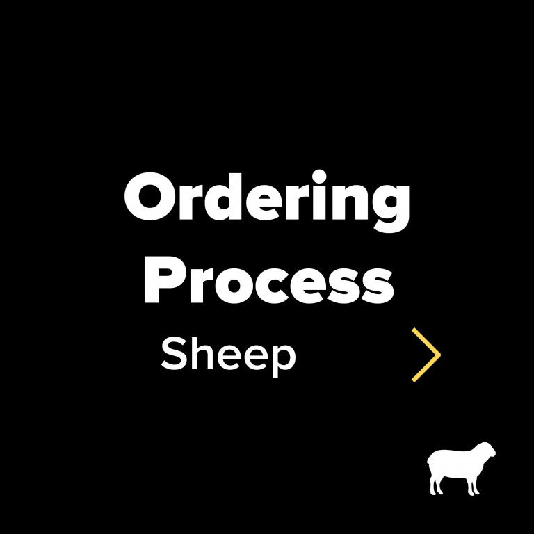 Ordering process sheep